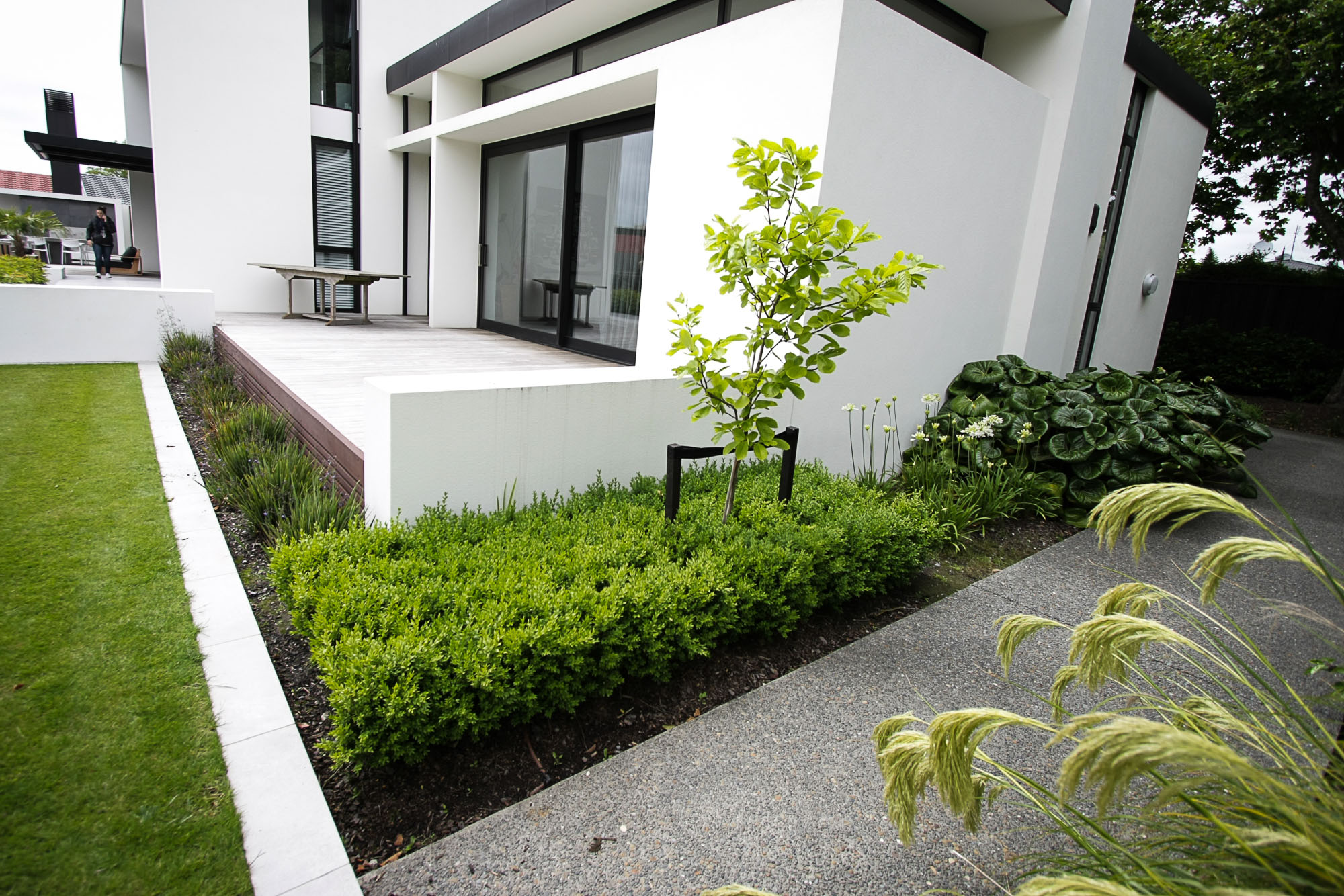 Merivale house residential landscaping project kamo marsh for Landscape design in christchurch